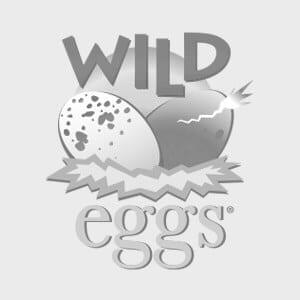 Wild-Eggs-Breakfast-Brunch-Brill-Creative-Clients